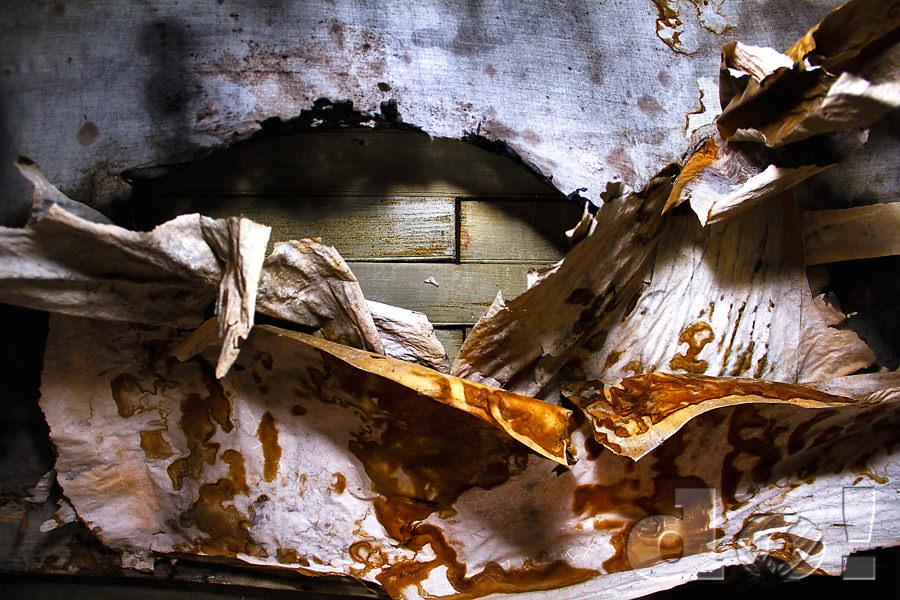 CeilingTexture_BannackGhostTown_DustinOlsen by Array.