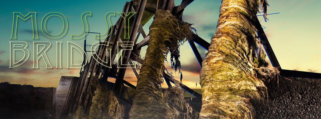 Mossy Bridge – Light Painting
